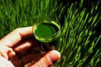 clorofeeling